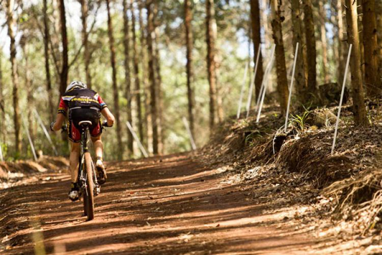 Tygerberg MTB Trails, South Africa